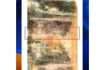 Man tries to claim lotto prize with damaged ticket
